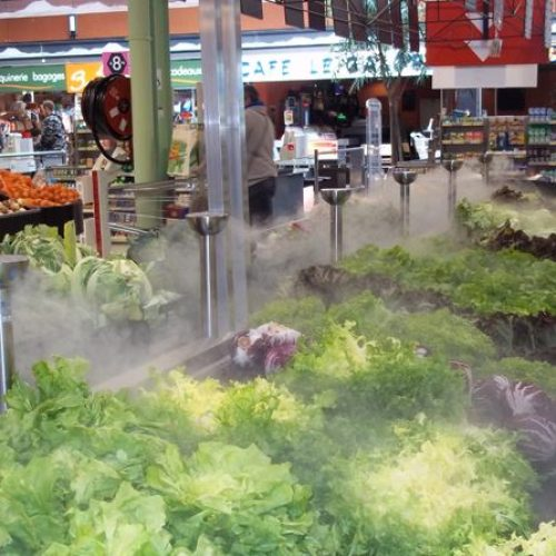 nebulisation bro rayon legumes